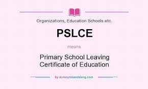 PSLCE Examination Results