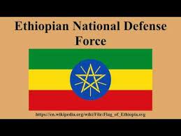 Ethiopian National Defense Force Job