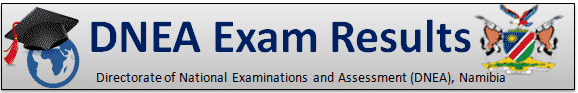 DNEA Exam Results